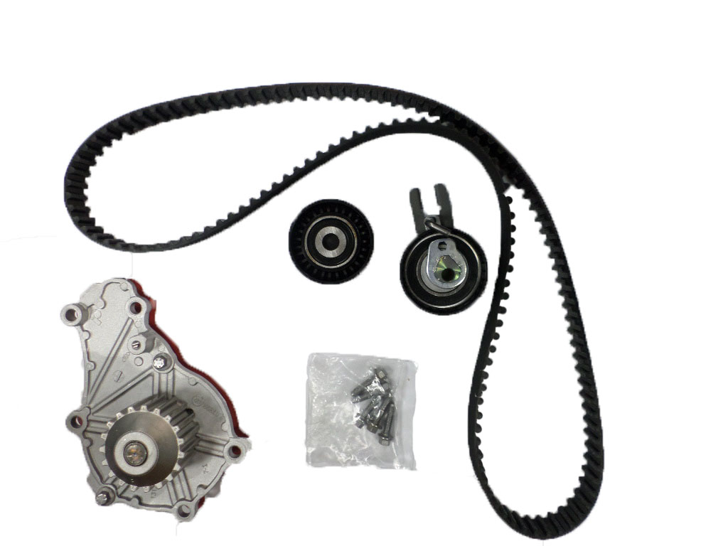 Ford Timing Belt : Genuine ford fiesta duratorq timing belt water pump