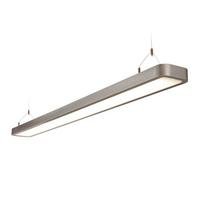 Saxby Reed Indoor Pendant Ceiling Light Silver Grey Paint Twin HF 2x35W G5 T5