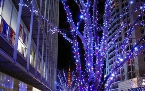IP65 LED Christmas Tree Lights String Fairy Lights 10m 6W