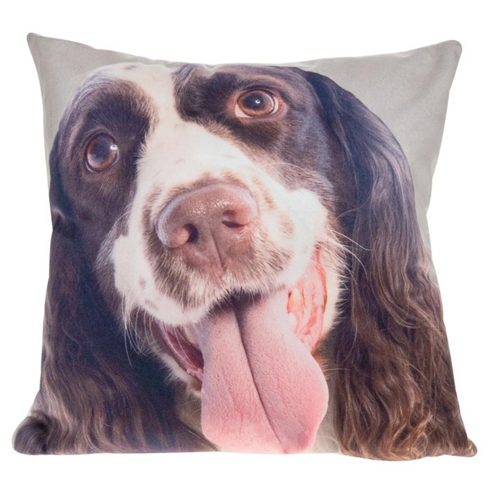 Visage Cushionl Springer Spaniel