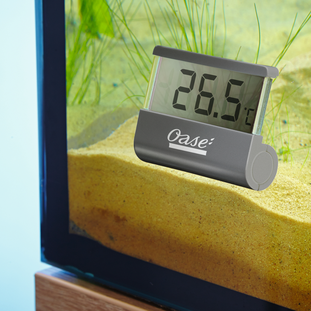 Oase digital aquarium thermometer for Aquarium thermometer