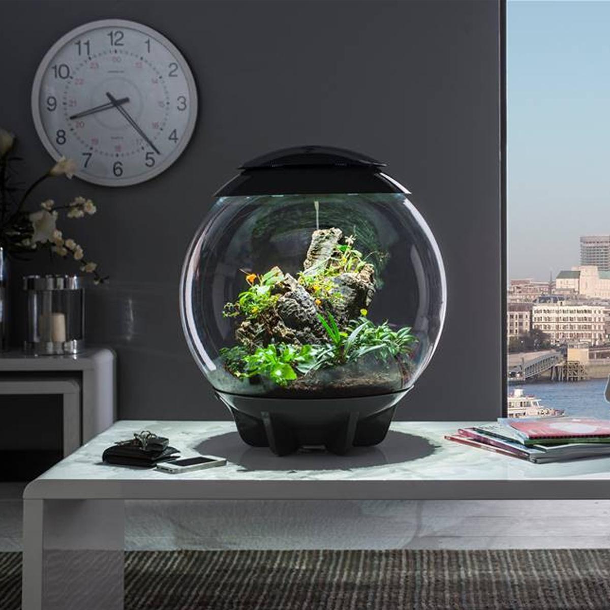 Awesome Sentinel Biorb Air L Terrarium Acrylic Tank Led
