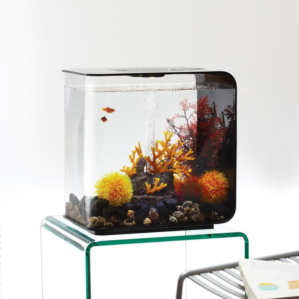 biorb flow 30l black with led lighting heater. Black Bedroom Furniture Sets. Home Design Ideas