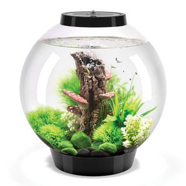 BiOrb Classic 30L Black Aquarium with Standard LED Lighting