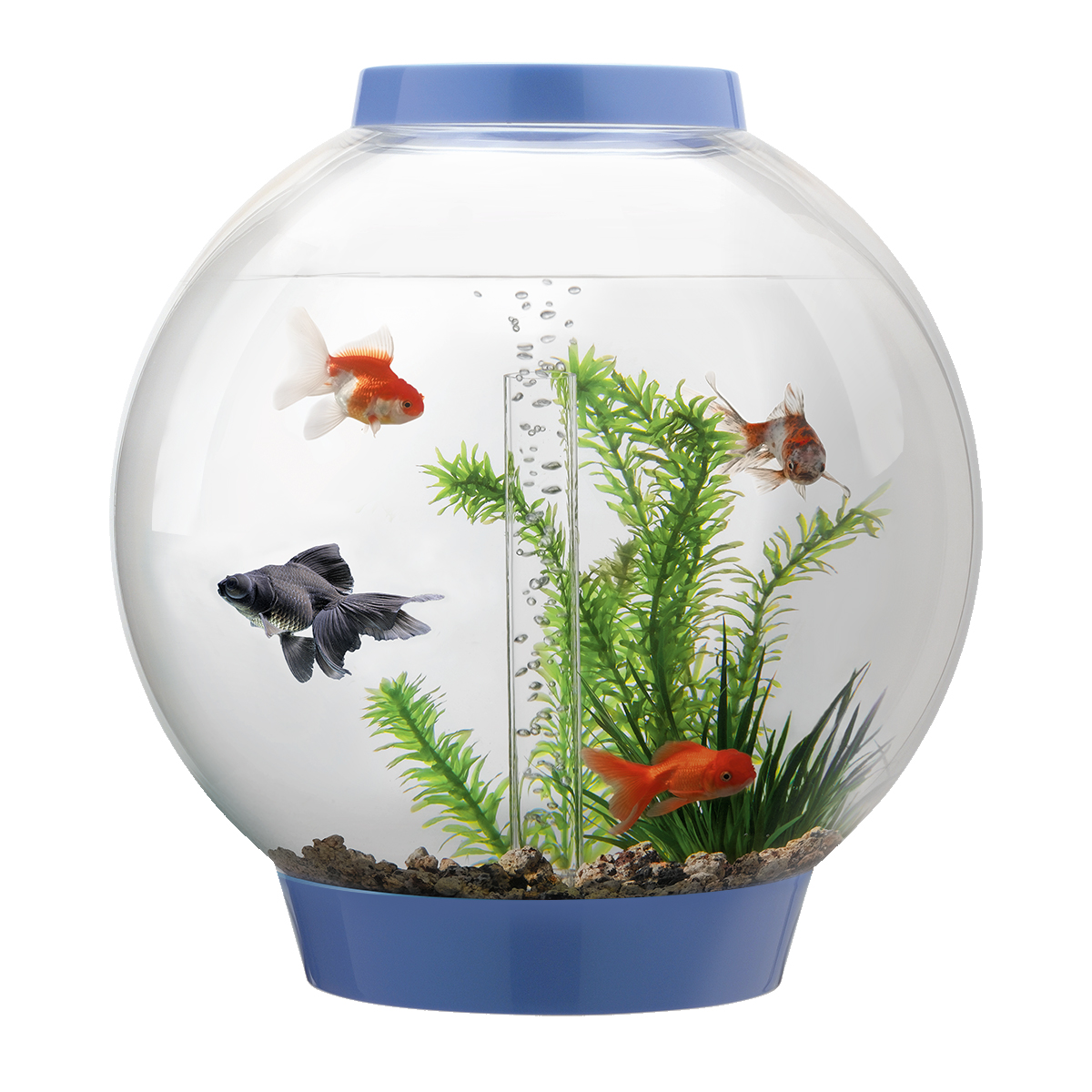 Biorb classic 30l denim blue aquarium with standard led for Fish bowl fish