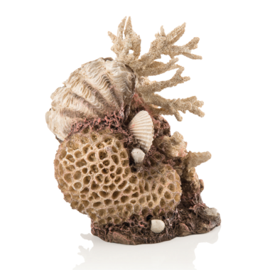 Oase BiOrb Aquarium Ornament Medium Natural Coral with SeaShells