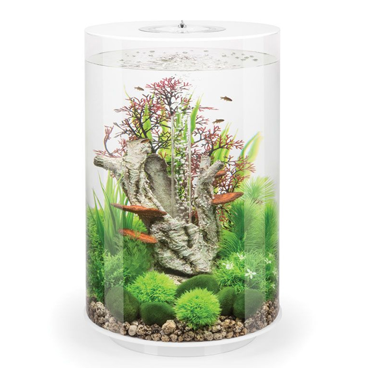 biorb tube 30l white aquarium with standard led lighting. Black Bedroom Furniture Sets. Home Design Ideas