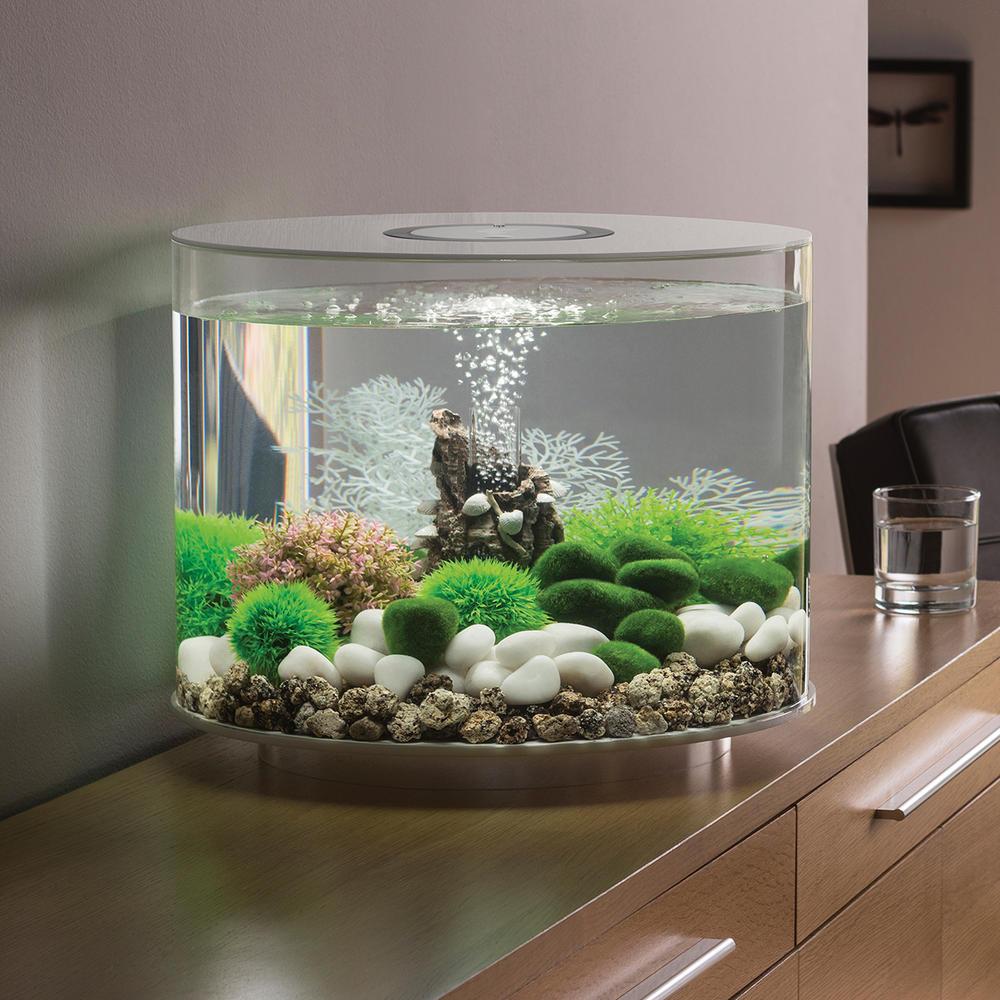 Biorb tube 35l white aquarium with standard led lighting for Aquarium decoration kits