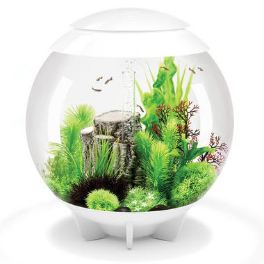 BiOrb Halo 60L White Aquarium with Moonlight LED Lighting