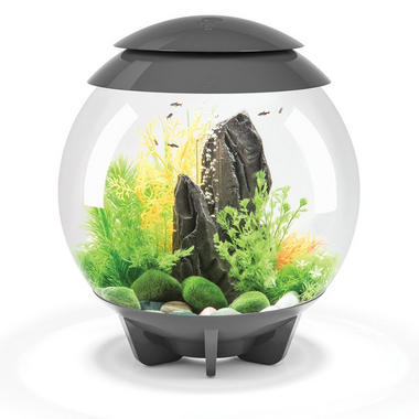 BiOrb HALO 30L Grey with Standard LED Lighting
