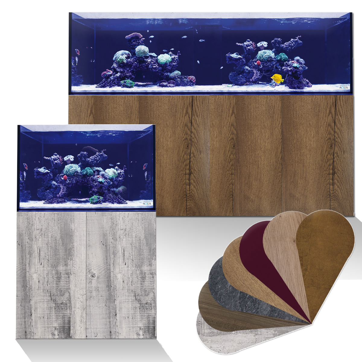 Feng Shui Fish Tank Best Placing and Number of Fish