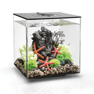 BiOrb 30L CUBE Black with MCR LED Lighting