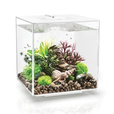 BiOrb CUBE 30L White Aquarium with MCR LED Lighting