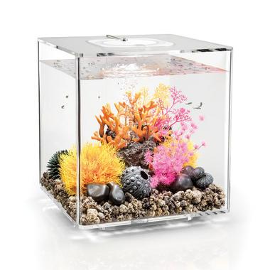 BiOrb CUBE 30L Clear Aquarium with MCR LED Lighting