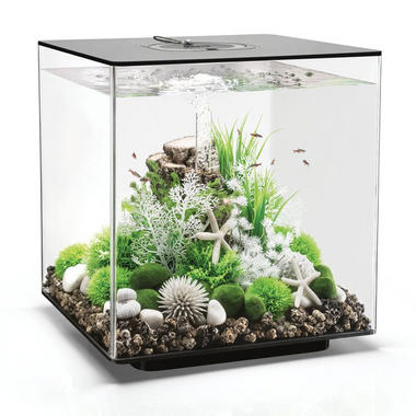 BiOrb CUBE 60L Black Aquarium with MCR LED Lighting