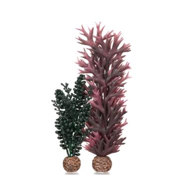 Oase BiOrb Seapearls and Kelp Aquarium Decoration