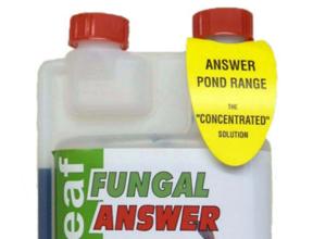 Fungus & Bacteria