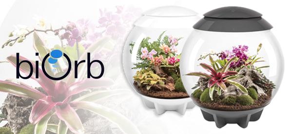 biOrbAIR | The Self-Sustaining Automatic Terrarium from biOrb