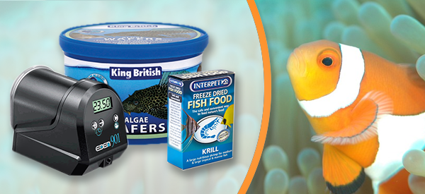 Food and Treats for Aquarium Fish