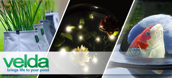 Bring Life to your Pond with Velda