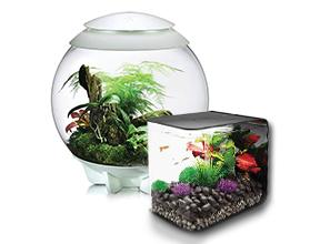 BiOrb Aquariums & Terrariums