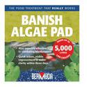 Bermuda Banish Algae Pads