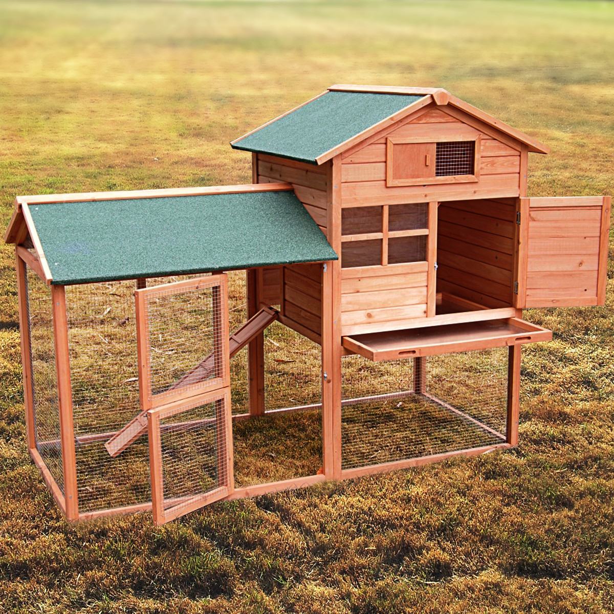 run the back hutches coop kent hutch with chicken