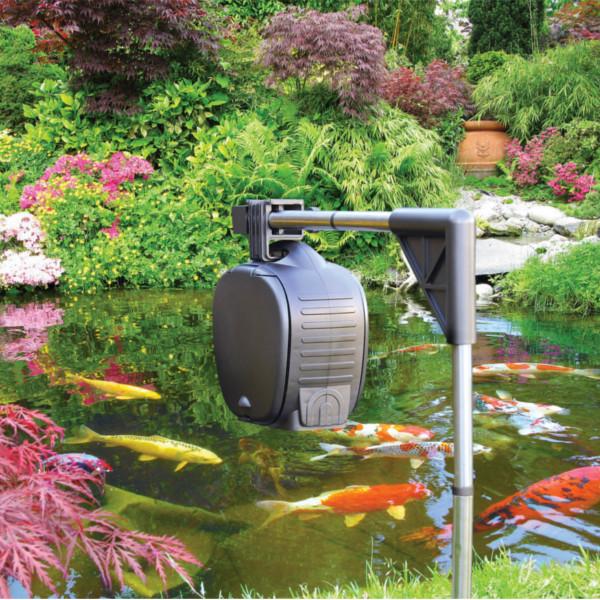 Hozelock automatic fish pond feeder auto food dispenser for Fish auto feeder
