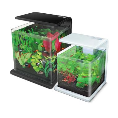 Superfish Wave Series Aquariums