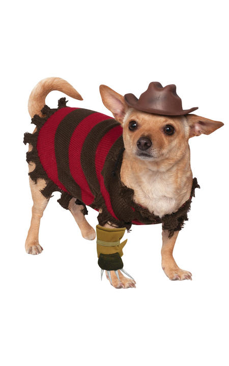 Freddy Dog Pet Costume Thumbnail 1