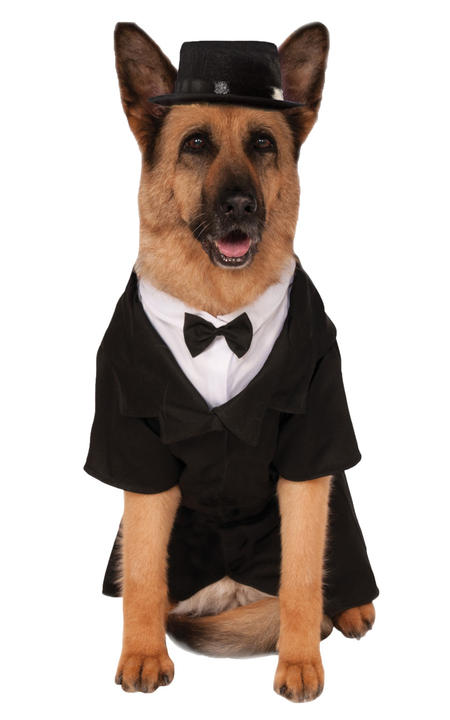 XXXL Dapper Pet Costume Thumbnail 1