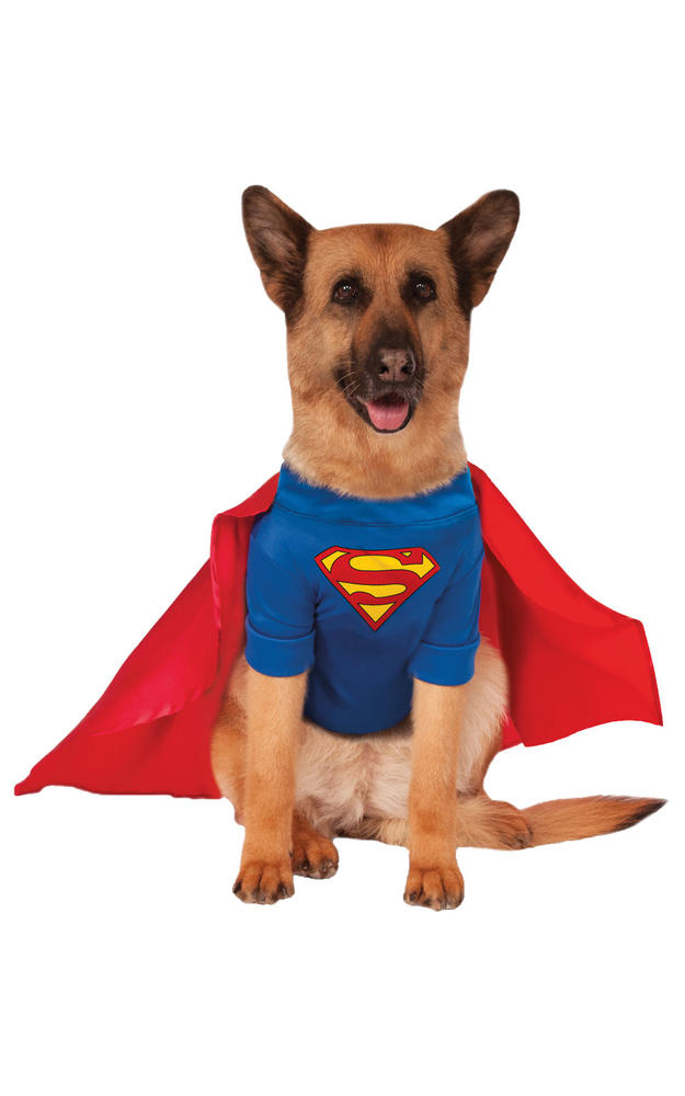 XXXL Superman Pet Costume