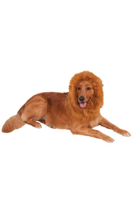 Lions Mane Deluxe Dog Costume Thumbnail 1