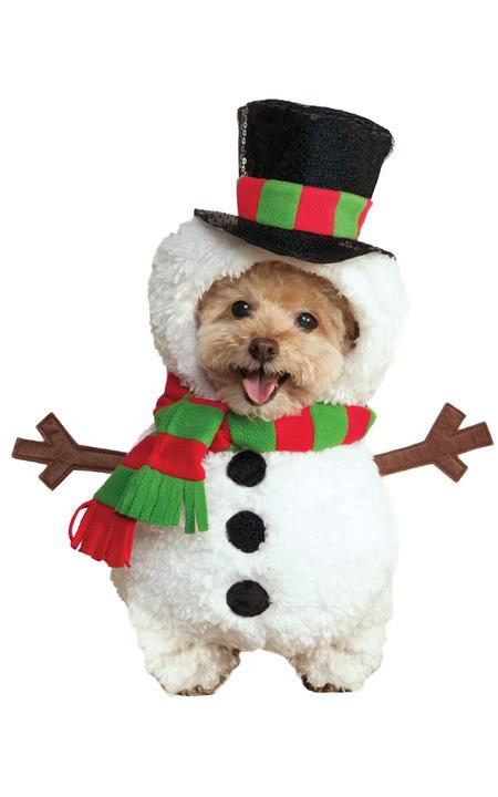 Snowman Pet Costume Thumbnail 1