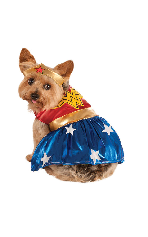 Wonderwoman Marvel Dog Costume