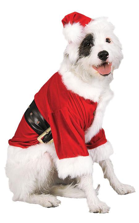 Santa Claus Pet Costume Thumbnail 1