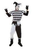 Harlequin Male Costume