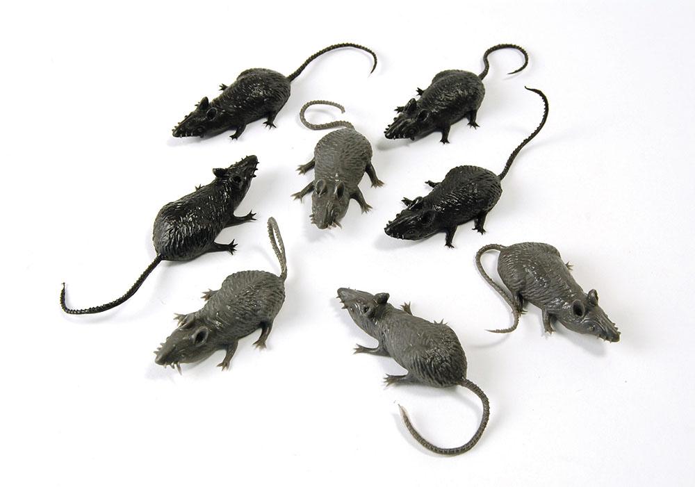 Scary Stuff Mice