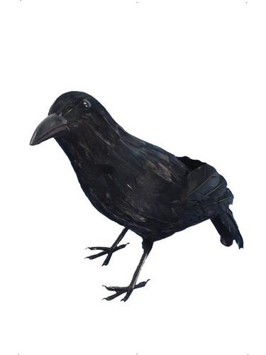 Realistic Crow Thumbnail 1