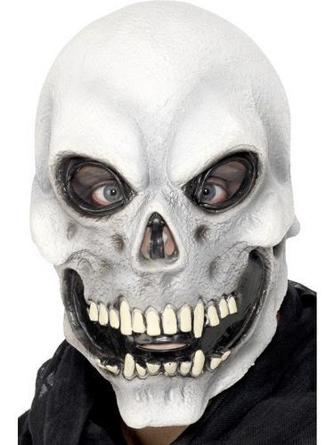 Overhead Skull Fancy Dress Mask Thumbnail 1