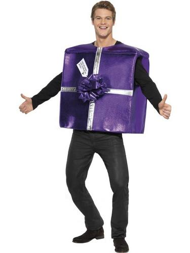 Chrismas Present Fancy Dress Costume Thumbnail 1