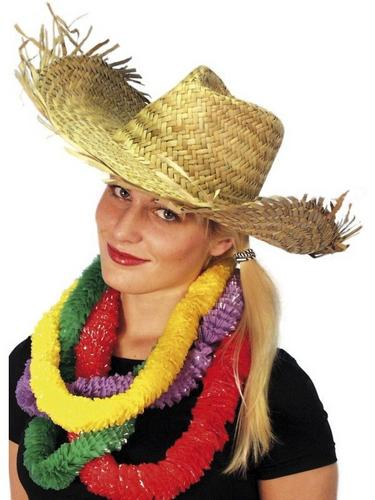 Hawaiian/Beachcombe Fancy Dress Hat Thumbnail 1