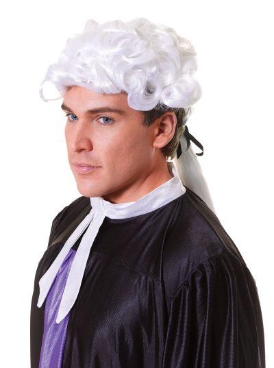 Court Wig. Unisex. Budget