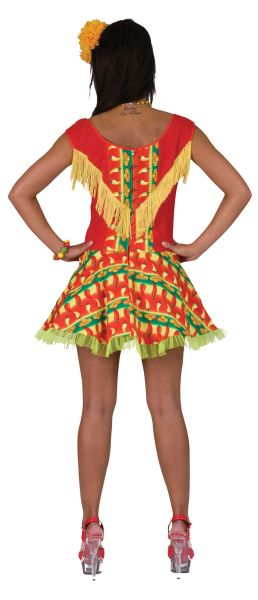 Mexican Lady Dress Thumbnail 2