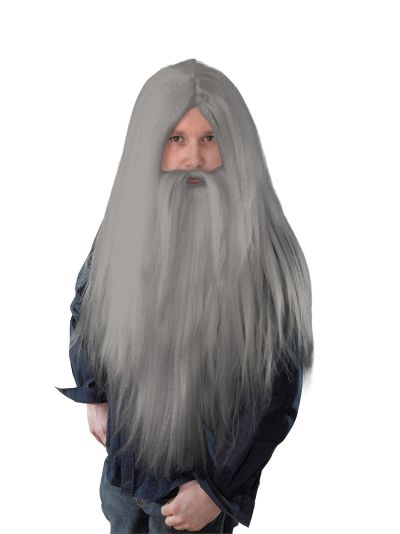 Grey Wizard Wig and Long Beard