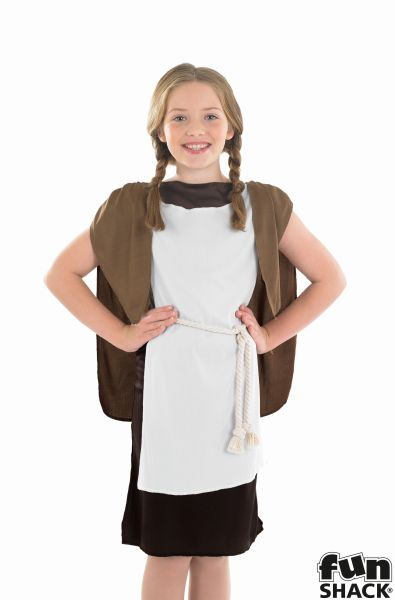 Viking Girl Fancy Dress Costume
