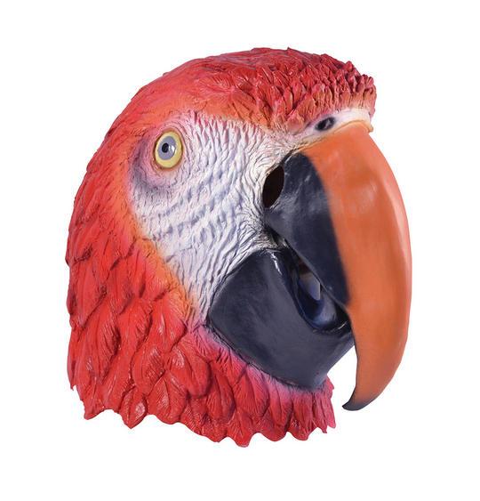 Parrot Thumbnail 1