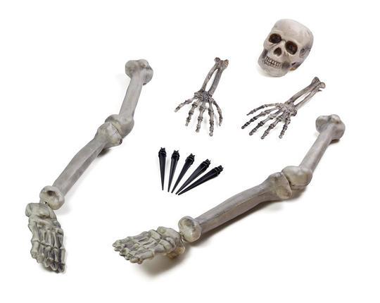 Skeleton Ground Breaker Thumbnail 1