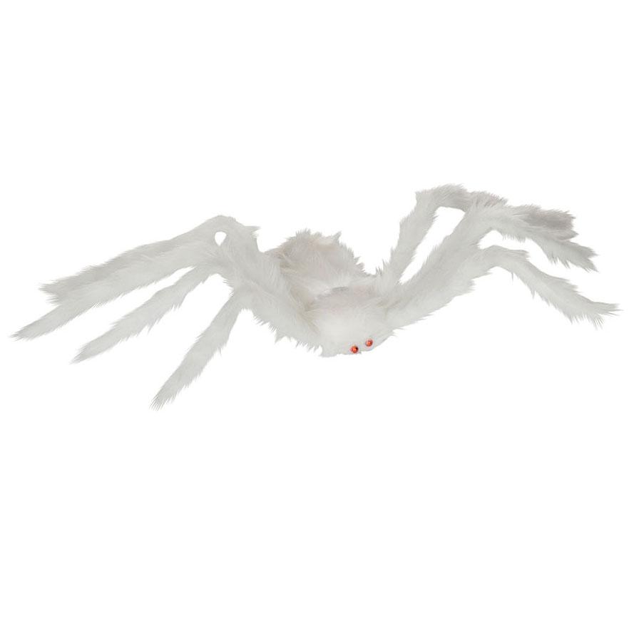 Hairy White Spider