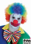 Adults Rainbow Clown Wig